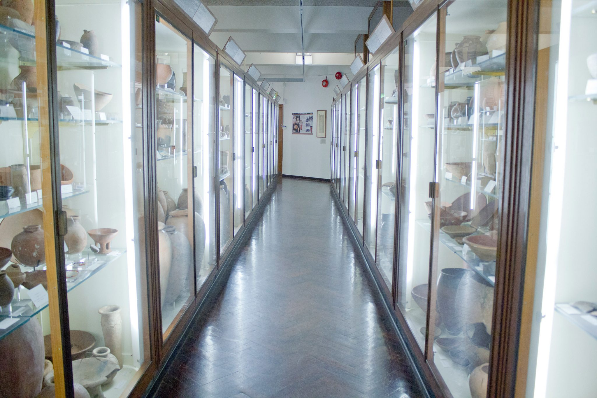 Residency at The Petrie Museum, UCL