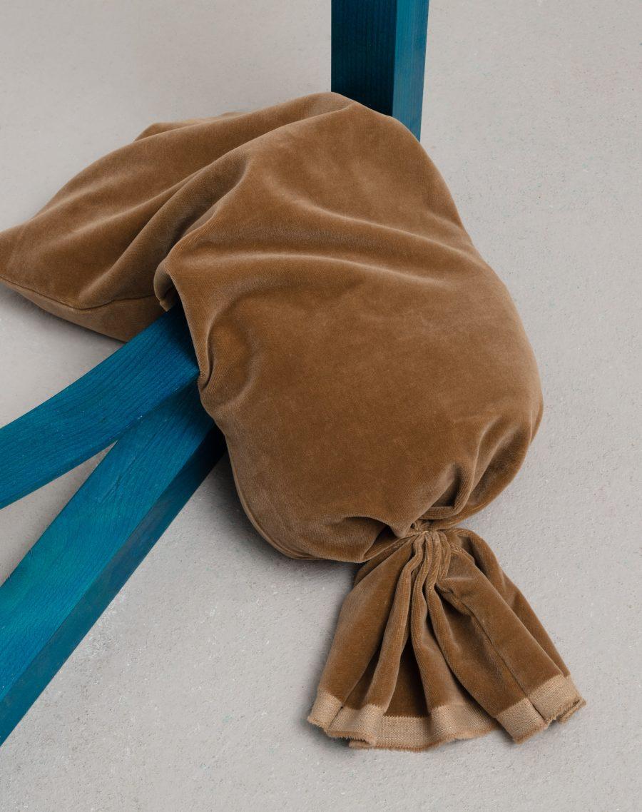 Windswept Baby   Introduction by Bethan Lloyd Worthington